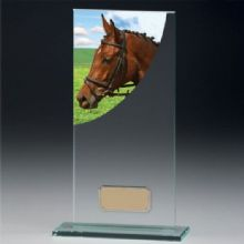 Colour Curve Jade Crystal Equestrian Award